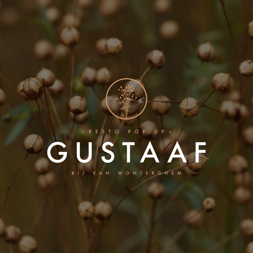 gustaaf